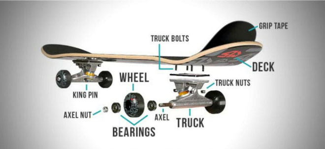 Anatomy-of-a-Longboard-700x322