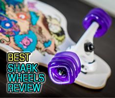 Best Shark Wheels Reviews
