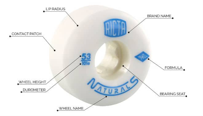 Skateboard Wheel Guide