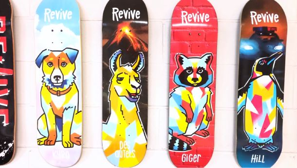 What to look for in a ReVive skateboard